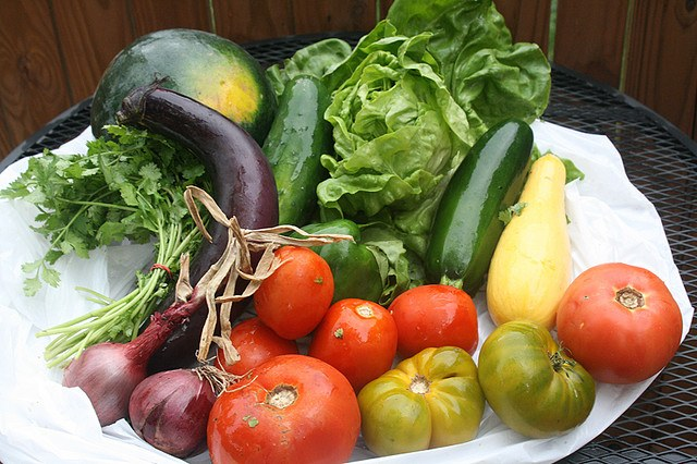 What is Community Supported Agriculture?