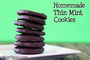 Thin Mint Cookie Recipe