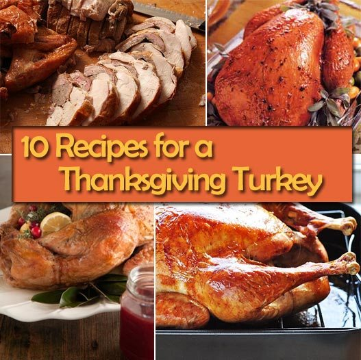 10 Recipes for How to Cook a Turkey